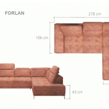 FORLAN-1