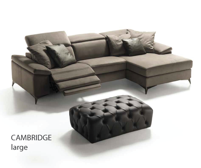 Cambiridge large